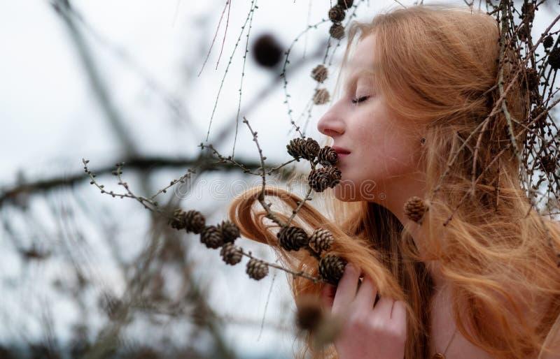 A menina ruivo 'sexy' nova bonita aprecia sorrir nos pinhos e em seu cabelo vermelho lindo bonito que travam em um galho do pinho imagens de stock