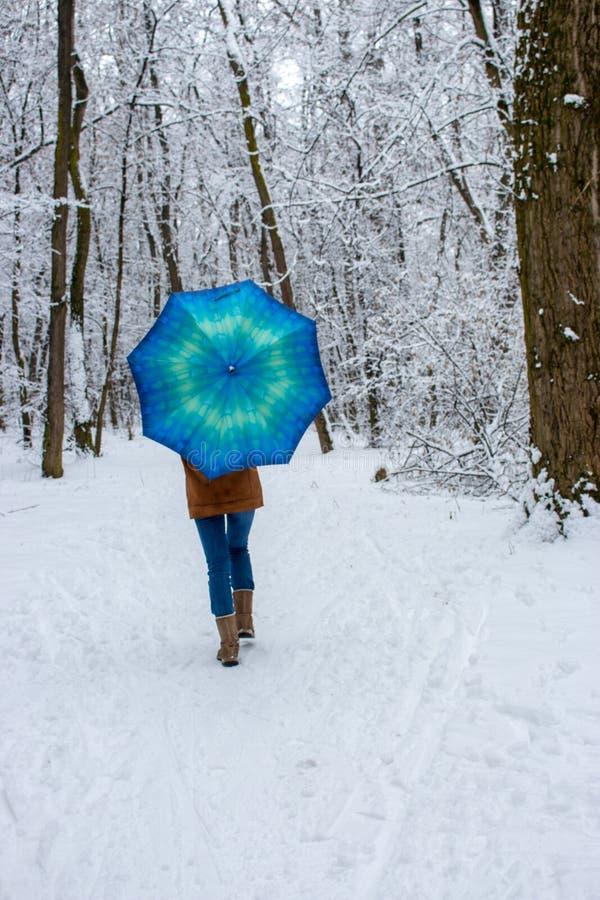 Menina sob o guarda-chuva azul no conceito nevado da queda de neve da floresta Mulher sob a chuva molhada da neve no parque do in fotografia de stock royalty free