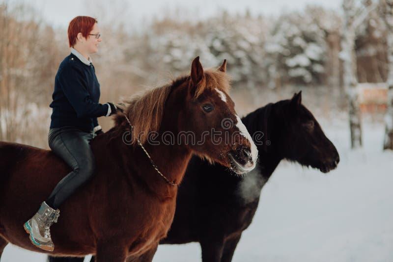 Menina sobre e cavalo vermelho com o cavalo preto no campo do inverno fotos de stock