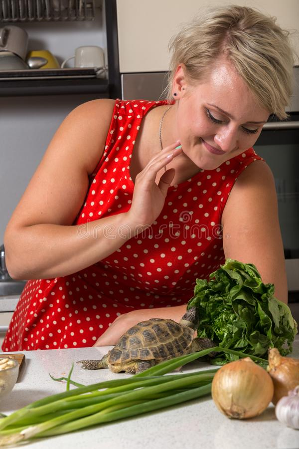 A menina sorri e observa a tartaruga que está comendo a salada romana foto de stock
