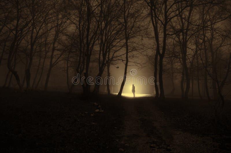 Menina sozinha com a luz na floresta na noite, ou azul tonificado imagens de stock