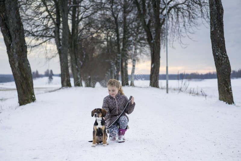 Menina sueco caucasiano loura pequena que senta-se com o cão na estrada na aleia do inverno imagem de stock royalty free