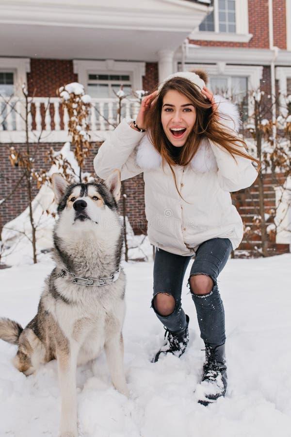 Menina surpreendente elegante que tem o divertimento com o cão ronco bonito exterior na neve Tempo de inverno feliz de amigos rea foto de stock royalty free