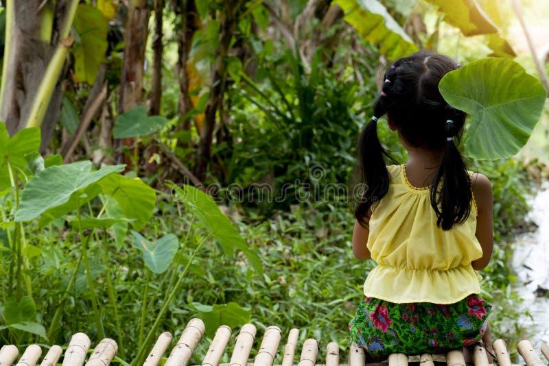 Menina tailandesa que senta-se pelo rio imagens de stock royalty free