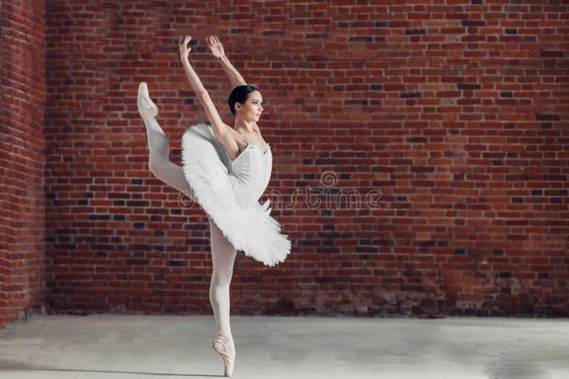 A menina talentoso reflete a beleza da dança fotografia de stock
