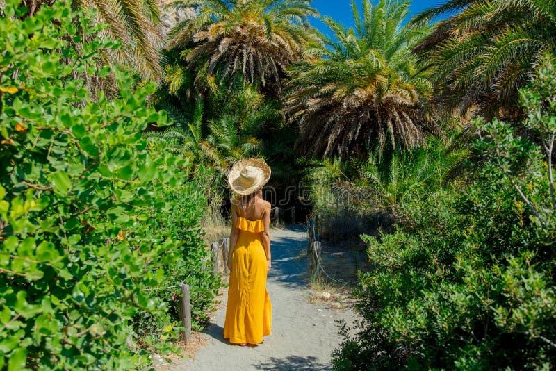 A menina tem o resto na floresta da palma fotografia de stock royalty free