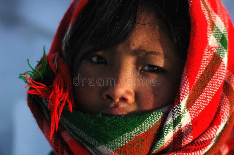 Menina tibetana imagem de stock