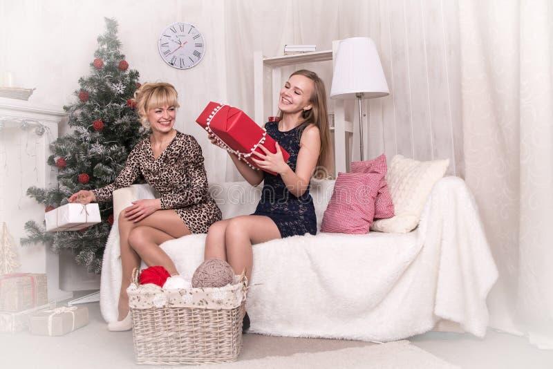 Meninas agradáveis na sala antes do Natal imagem de stock royalty free