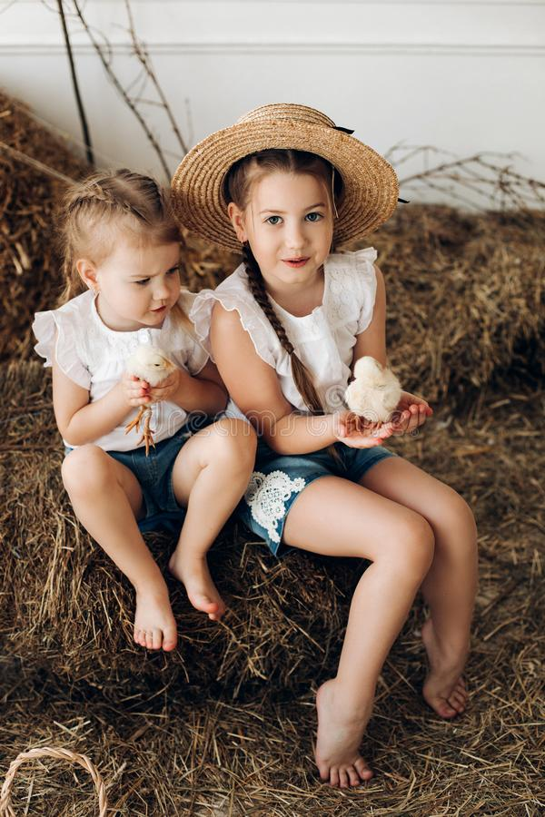 Meninas bonitos nos chapéus do feno que mantêm galinhas pequenas na vila fotografia de stock royalty free