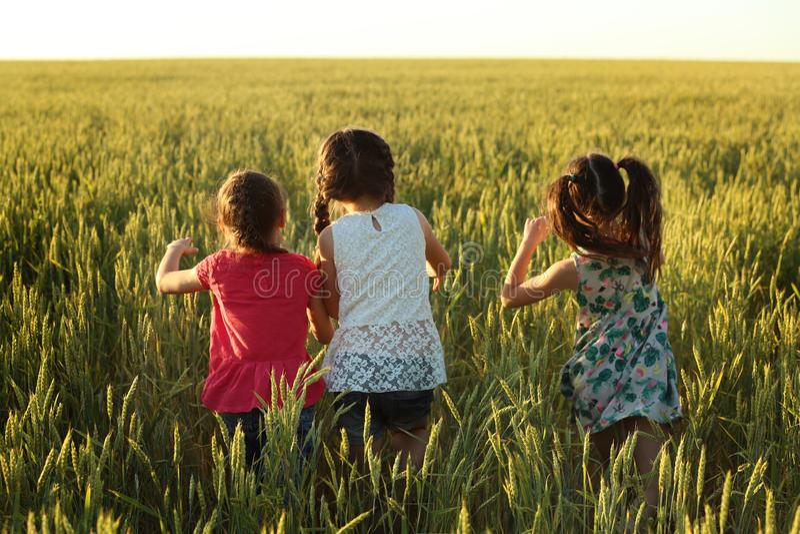 Meninas bonitos que jogam no campo fotos de stock