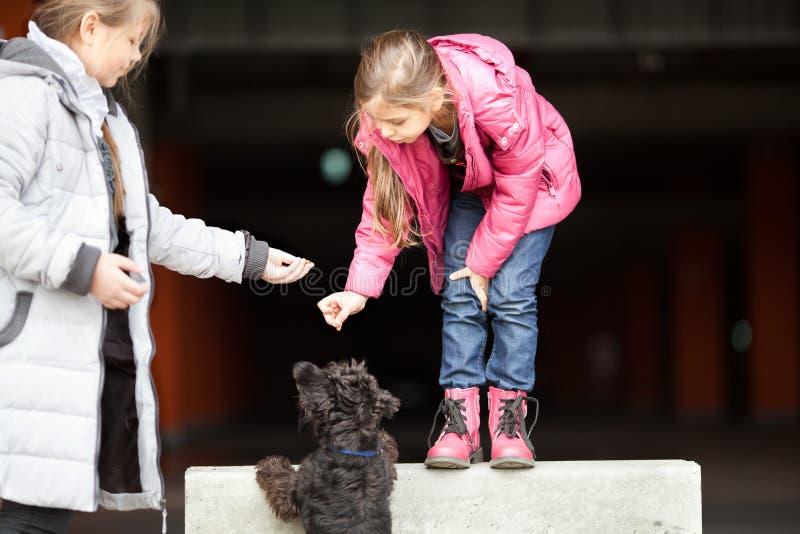 Meninas com animal de estimação imagens de stock