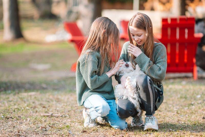 Meninas com um cachorrinho branco Um cachorrinho nas m?os do meninas foto de stock royalty free