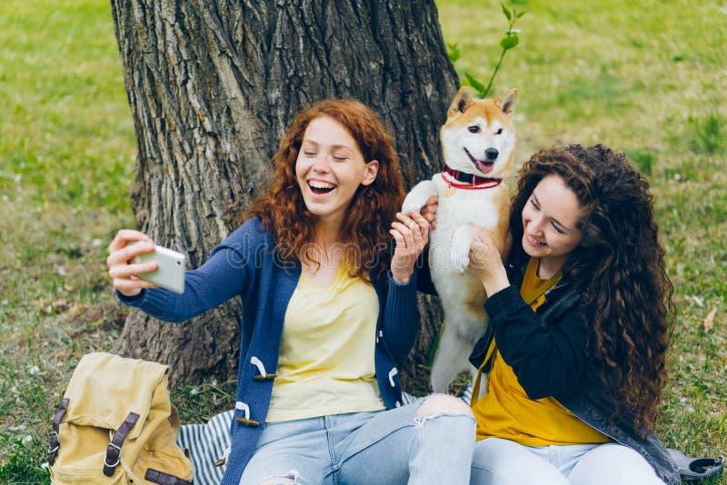 Meninas de amor dos proprietários do cão que tomam o selfie com o animal de estimação no parque usando a câmera do smartphone foto de stock royalty free