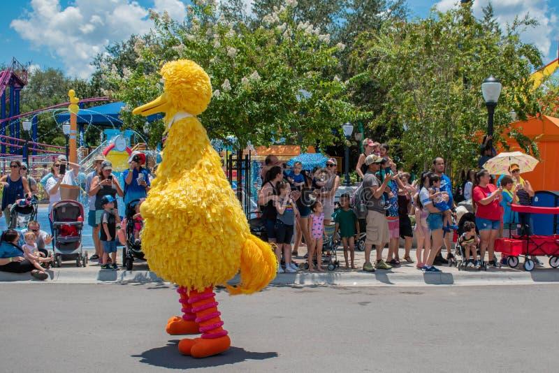 Meninas de Big Bird e de dança na parada do partido do Sesame Street em Seaworld 8 fotografia de stock royalty free