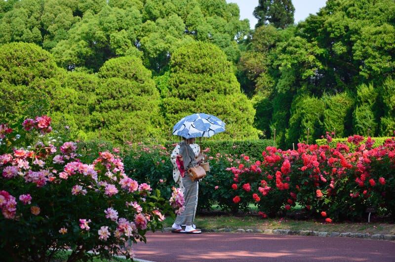 Meninas de florescência do jardim de rosas e do quimono, Japão fotos de stock royalty free