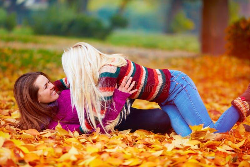 Meninas deleitadas, amigos que têm o divertimento entre as folhas caídas no parque do outono fotos de stock