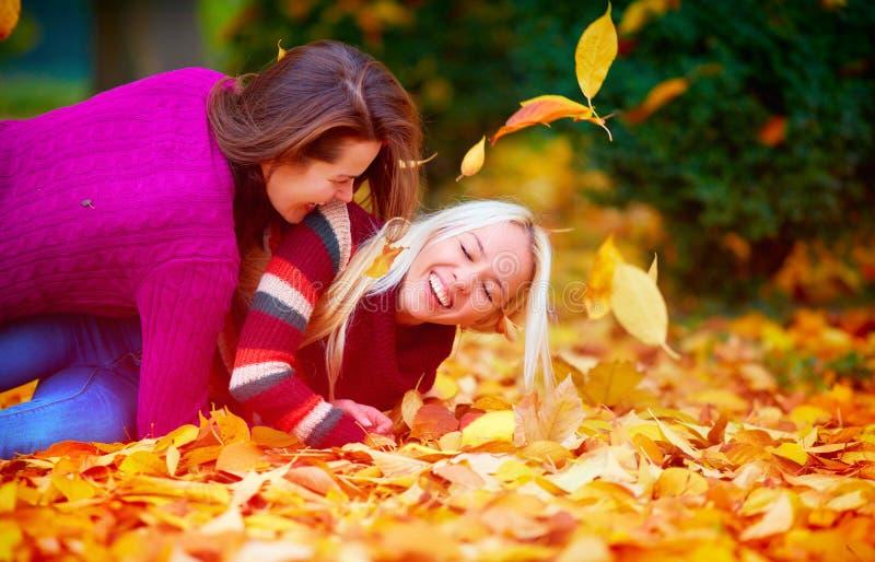 Meninas deleitadas, amigos que têm o divertimento entre as folhas caídas no parque do outono foto de stock