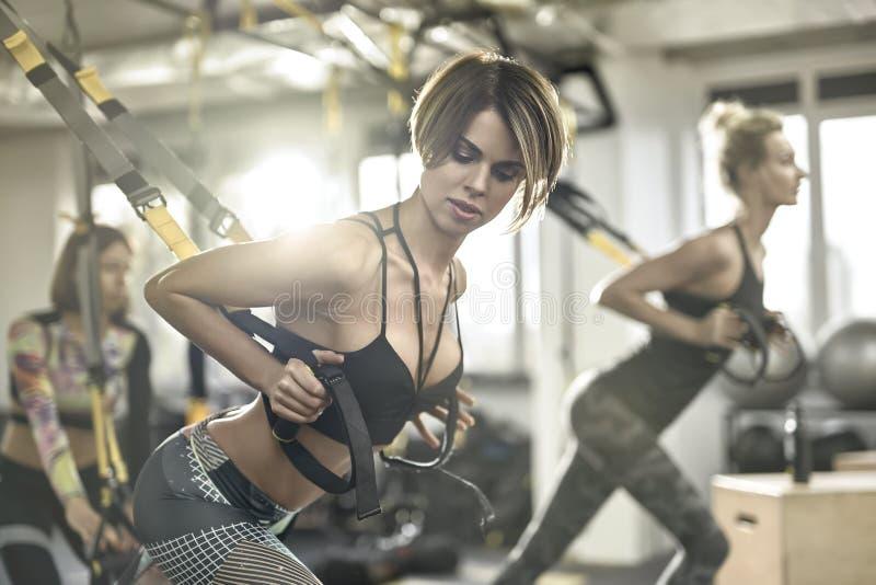 Meninas desportivos que treinam no gym foto de stock royalty free
