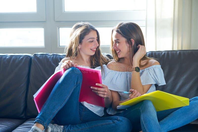 Meninas do melhor amigo que estudam trabalhos de casa em casa imagens de stock royalty free