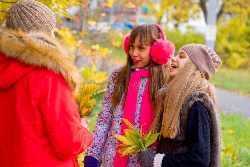Meninas do Preteen que falam-se no parque fotografia de stock