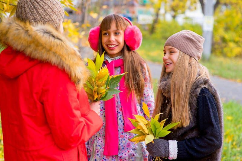 Meninas do Preteen que falam-se no parque imagens de stock royalty free