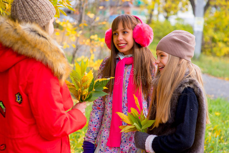 Meninas do Preteen que falam-se no parque foto de stock