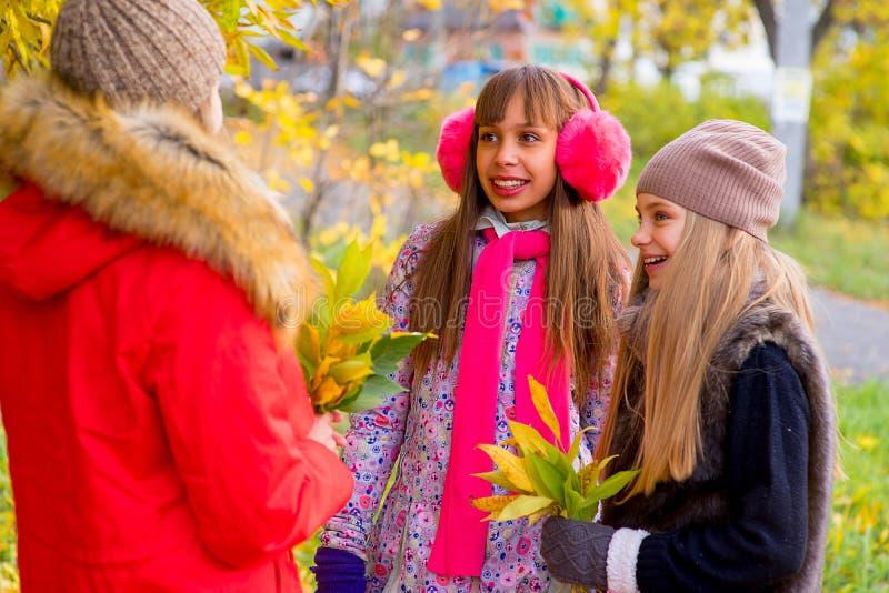 Meninas do Preteen que falam-se no parque fotografia de stock royalty free