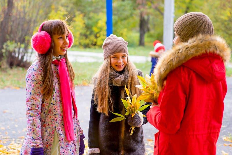 Meninas do Preteen que falam-se no parque foto de stock royalty free