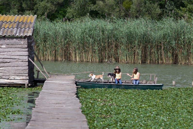 Meninas e cães no barco imagens de stock royalty free