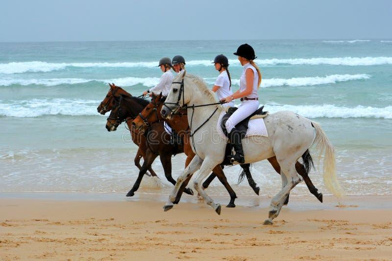 Meninas e cavalos no passeio da praia fotografia de stock