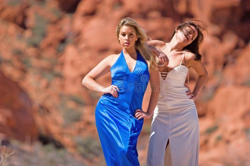 Meninas elegantes 'sexy' imagem de stock