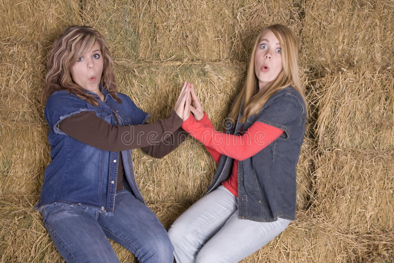 Meninas no feno surpreendido imagens de stock royalty free