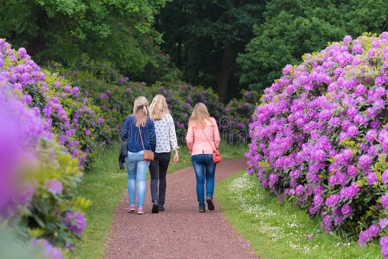 Meninas no parque do rododendro fotos de stock royalty free