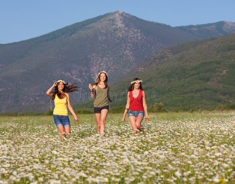 Meninas no prado da flor fotos de stock royalty free