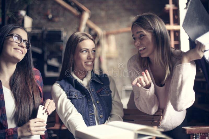 Meninas que aprendem junto e que têm o divertimento na biblioteca fim imagem de stock