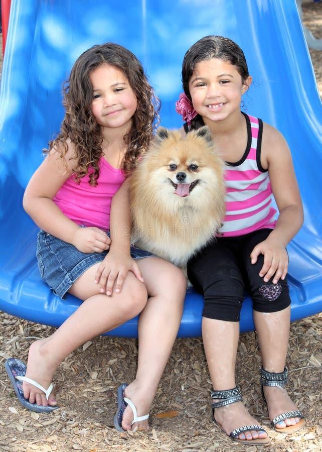 Meninas que jogam com seus cães foto de stock royalty free