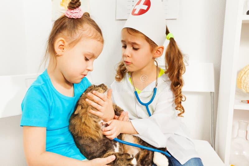 Meninas que jogam veterinários com estetoscópio e gato imagens de stock