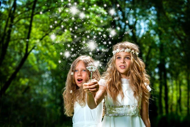 Meninas que moldam períodos mágicos nas madeiras. fotografia de stock royalty free