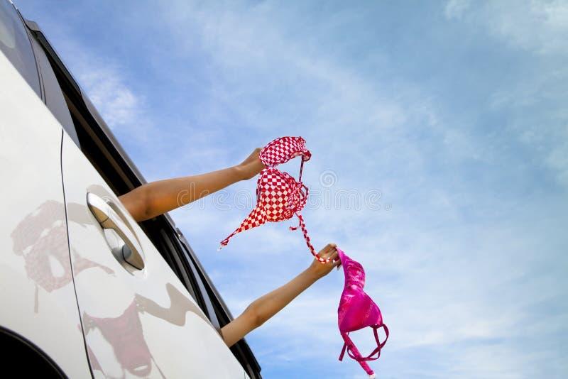 Meninas que prendem o biquini fotografia de stock royalty free