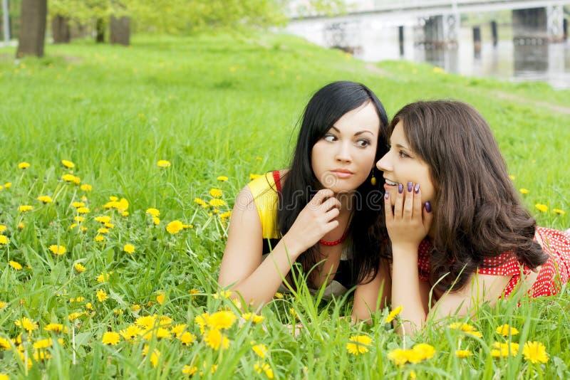 Meninas que segredos separáveis um com o otro fotos de stock royalty free