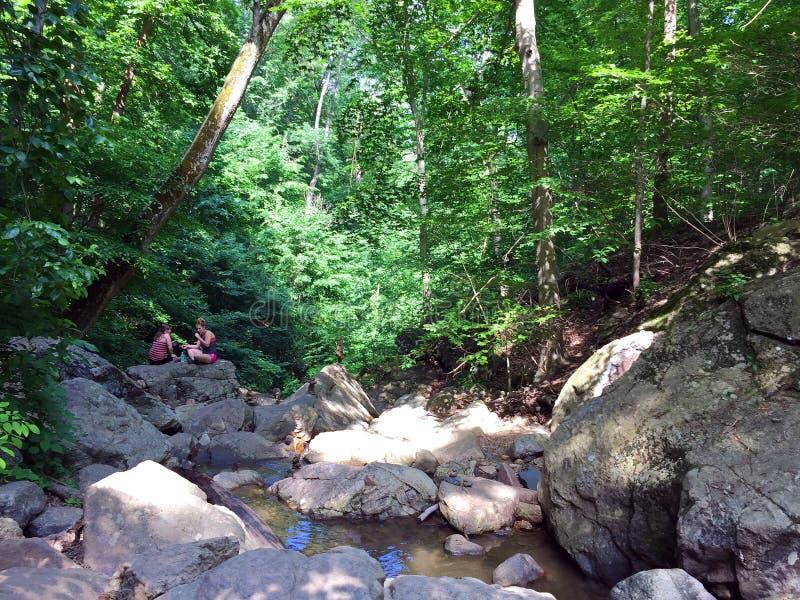 Meninas que sentam-se em uma rocha do rio na floresta fotografia de stock