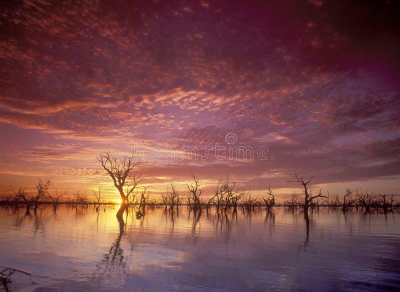 Menindee Lakes. Sunset over Menindee Lakes in the far west of NSW, Australia royalty free stock photos