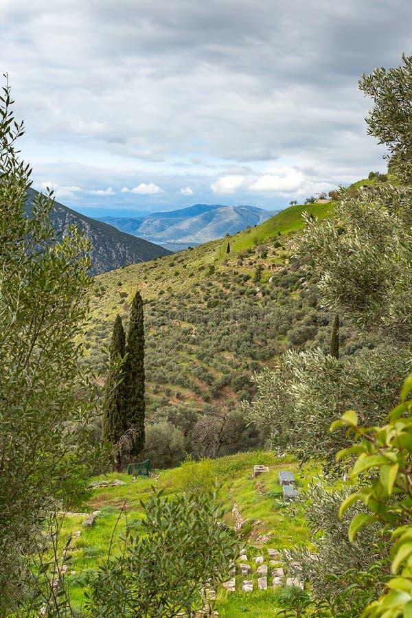 Mening aan Delphi, die de vallei van Phocis, Griekenland, Europa overzien royalty-vrije stock foto's