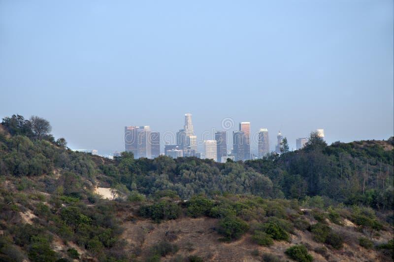 Mening aan doowntown Los Angeles van Griffith Park stock afbeeldingen