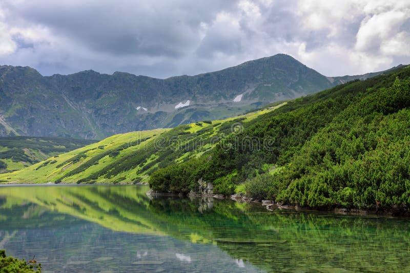 Mening aan meer, lage pijnboombomen, groene heuvel en rotsachtige bergen royalty-vrije stock afbeelding