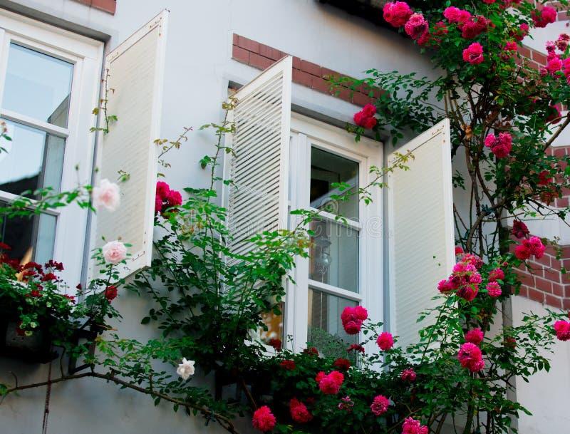 Mening bij witte open vensters met rozen royalty-vrije stock afbeelding