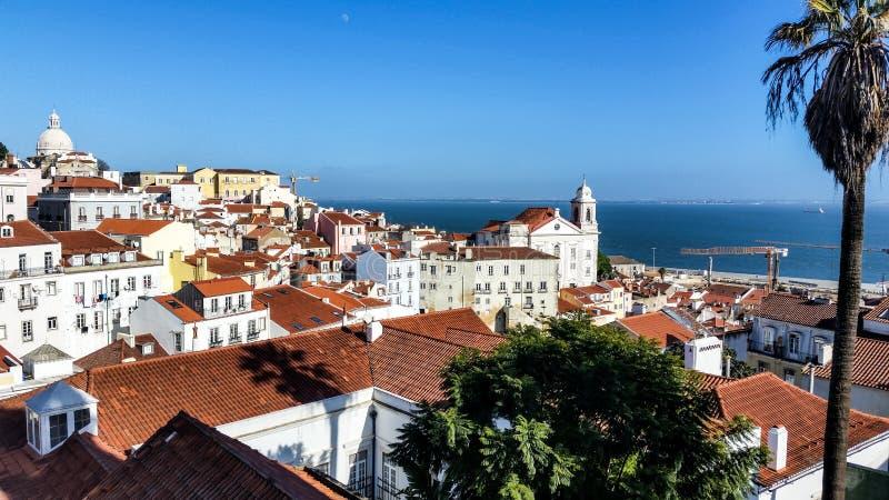 Mening - Lissabon - Portugal stock foto's