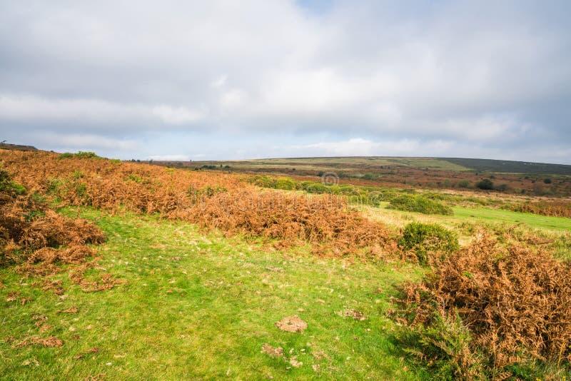 Mening over Dartmoor en de kust van Zuidendevon van Haytor royalty-vrije stock afbeelding