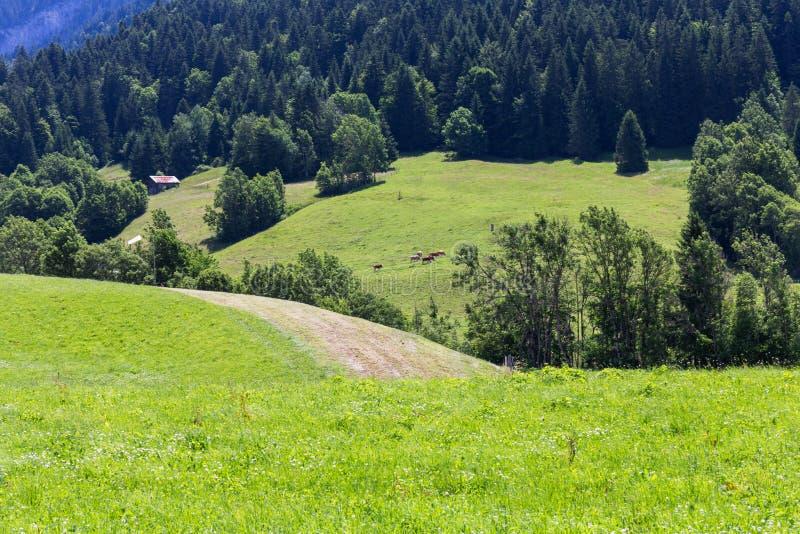 Mening over de Alpen, Zwitserland royalty-vrije stock afbeelding