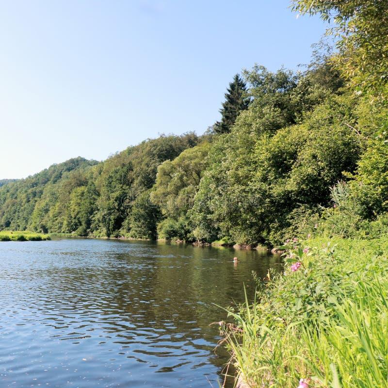 Mening over de rivier Semois, Belgische Ardennen stock foto's